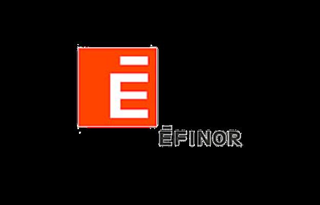 EFINOR logo